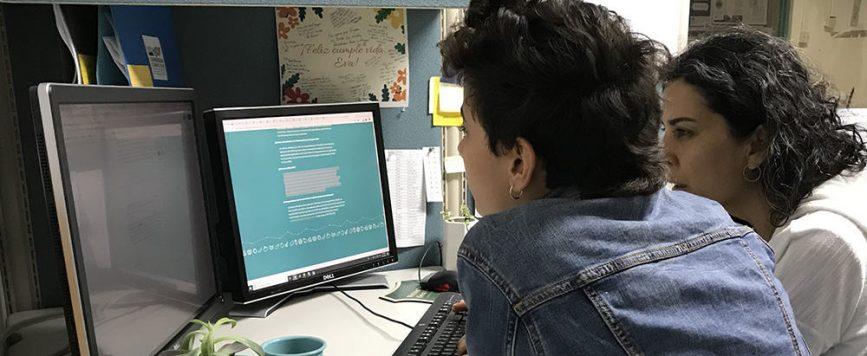 Nueva herramienta digital visibiliza la producción agrícola de Puerto Rico