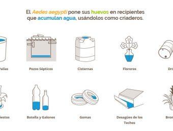Unidad de Control de Vectores de Puerto Rico inicia campaña de prevención para controlar el mosquito Aedes aegypti desde la casa