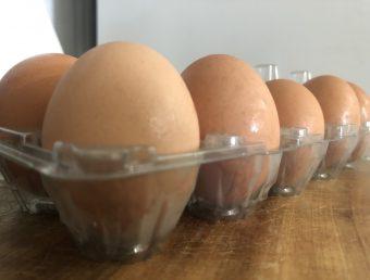 En algunos comercios los huevos están caros pero están dentro del margen de ganancia, según DACO