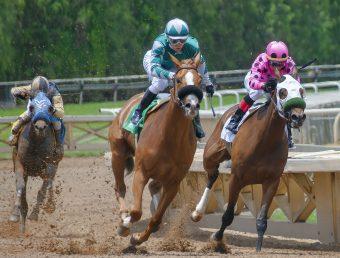 Líder criadores de caballos pide renuncia presidente del Hipódromo Camarero
