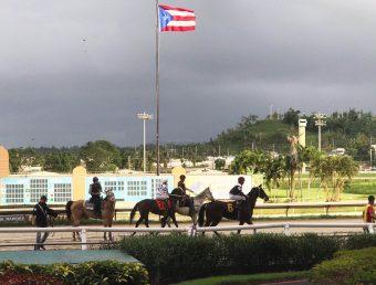 Industria hípica retoma actividades en Puerto Rico