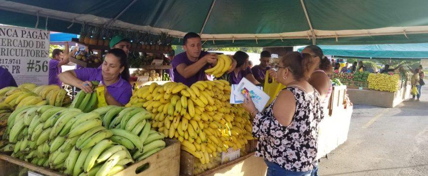 Cadena de supermercados respalda restablecimiento de Mercados Familiares