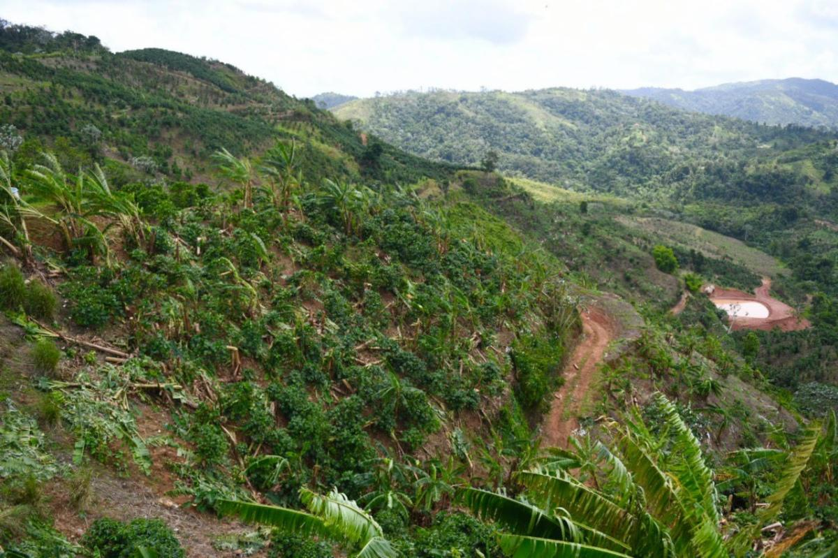 Representante de pueblos de la montaña le dará prioridad a la agricultura durante los próximos años