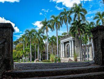 Universidad de Puerto Rico supera este año el número de estudiantes admitidos al compararse al 2020