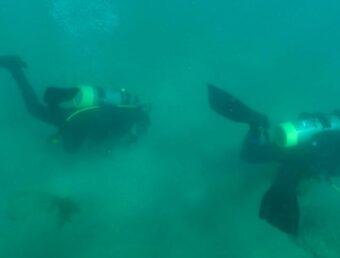 Remueven sobre 5,000 libras de basura y rescatan múltiples organismos atrapados durante limpieza submarina en Puerto Rico
